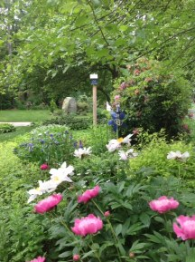 2014 Zolli garden