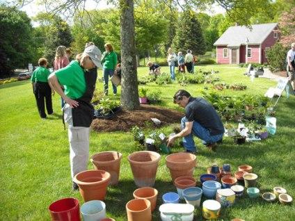 Garden pots for Sale