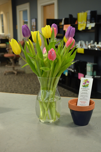 March display by Sally Eykel