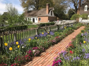 Backyard Gardens in Colonial Williamsburg Williamsburg Virginia2