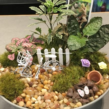 June display by Susan Brindley