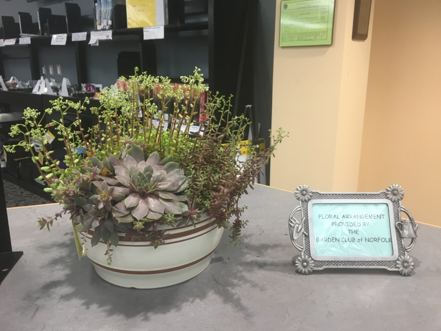 May display by Anne Prior