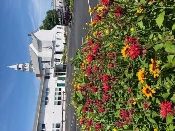 Federated Church Butterfly Garden