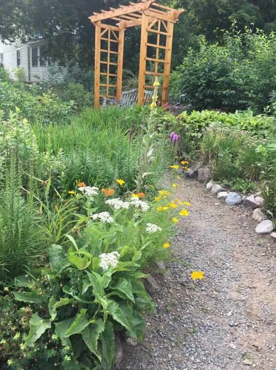 Stony Brook Butterfly Garden