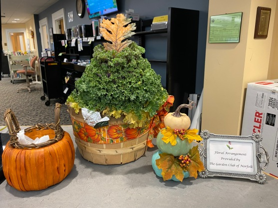October display by Michele Drolette and Sally Eykel